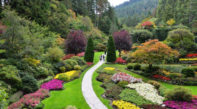 UAMJS trabaja con la Alcaldía para crear un Jardín Botánico