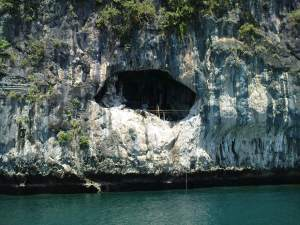 bird nests cave