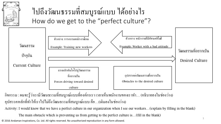 Activity Perfect Culture