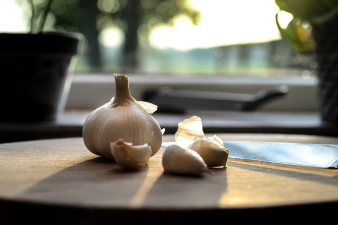 photography of garlic on wooden table