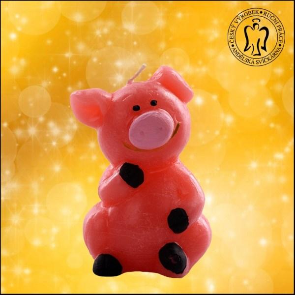 PF Prasátko - hodně štěstí do nového roku, Andělská svíčkárna, PF pig, Happy new year, for luck, candle, Angels candles 02