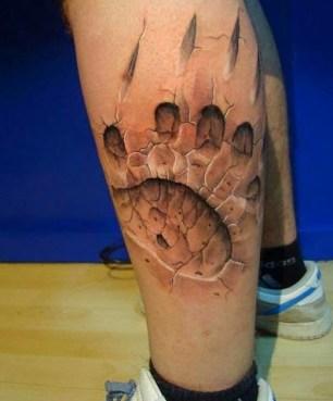 leg paw