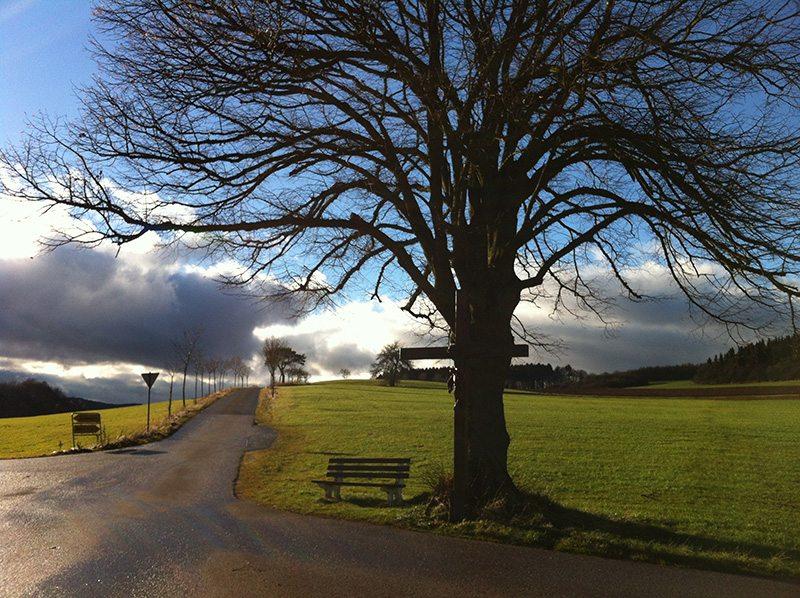 Wege, Bäume, Wolken, grün, Winter, Regenstimmung