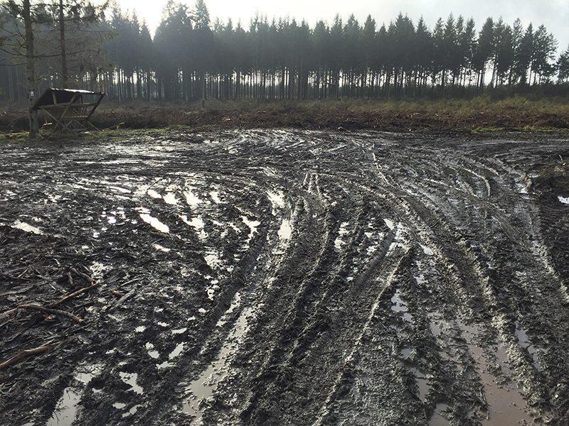 Hier steht ein Bild mit dem Titel: Forstwirtschaftlicher Kahlschlag mit schwerem Gerät. Wo einst der Wald stand, herrscht jetzt Trostlosigkeit (Foto: Hans-Joachim Schneider)