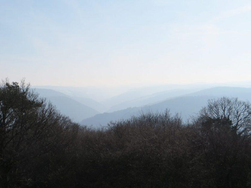Blick vom Steinerberg über die zarten Hügel der Südeifel