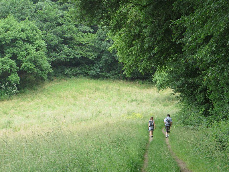Nach der Enge der Wolfsschlucht geht es hinaus in die Weite der Wiesen und Felder (Foto: Hans-Joachim Schneider)