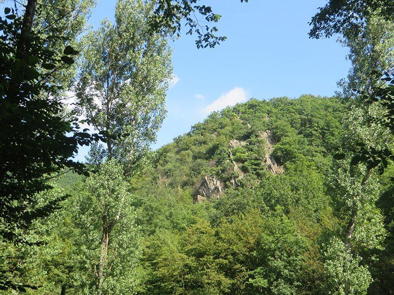 Von diesem ganz besonderen Platz im Wald blickt der Jäger Hampit auf das Murscher Eselsche (Foto: Hans-Joachim Schneider)