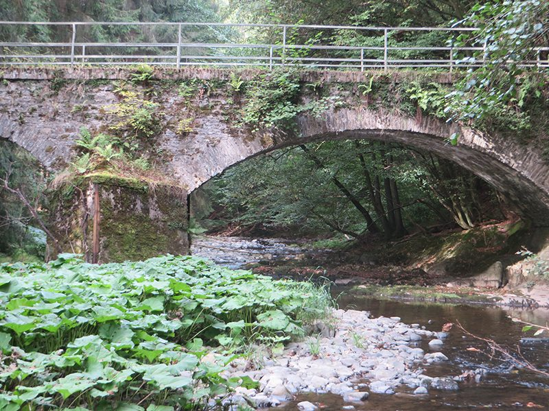 Hier steht ein Bild mit dem Titel: Die Brücke mit dem Durchblick, dahinter fängt ne neue Welt an (Foto: Hans-Joachim Schneider)