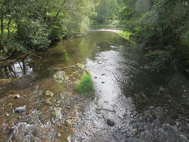 Hier steht ein Bild mit dem Titel: Wildwasserrafting am Westerwaldsteig, meine neueste Marketingidee (Foto: Hans-Joachim Schneider)
