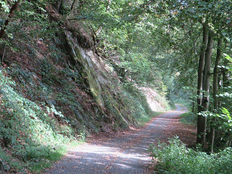 Hier steht ein Bild mit dem Titel: Endlich Seitenwechsel: der Westerwaldsteig am linken Ufer der Nister (Foto: Hans-Joachim Schneider)