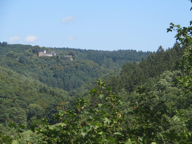 Kurz vor dem Abstieg zur Ehrbachklamm öffnet sich der Blick auf Schloss Schöneck (Foto: Hans-Joachim Schneider)