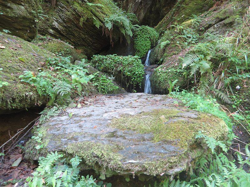 Zauberhafter namenloser Wasserfall (Foto: Hans-Joachim Schneider)