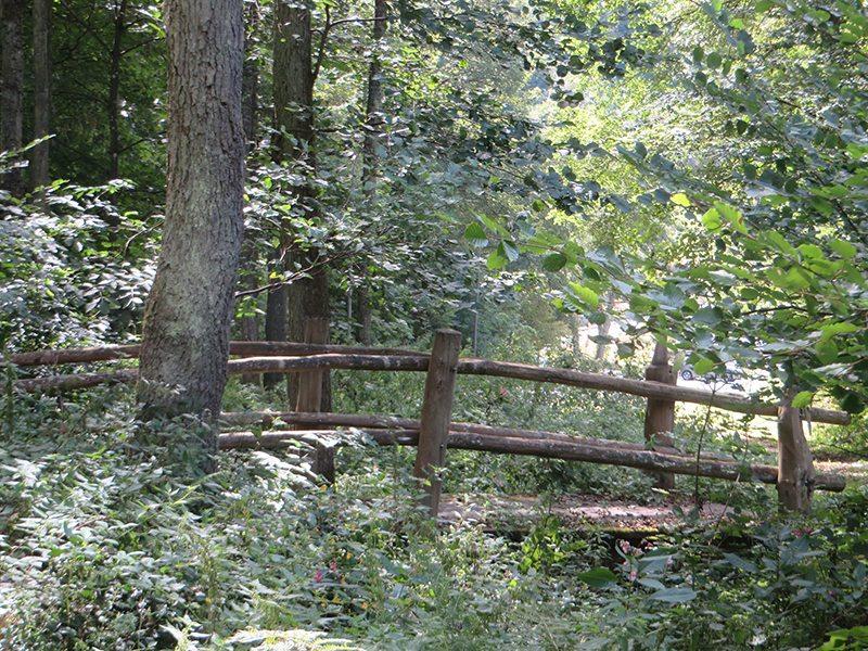 Die kleine zauberhafte Holzbrücke, bringt mich am Waldrand zum Parkplatz bringt