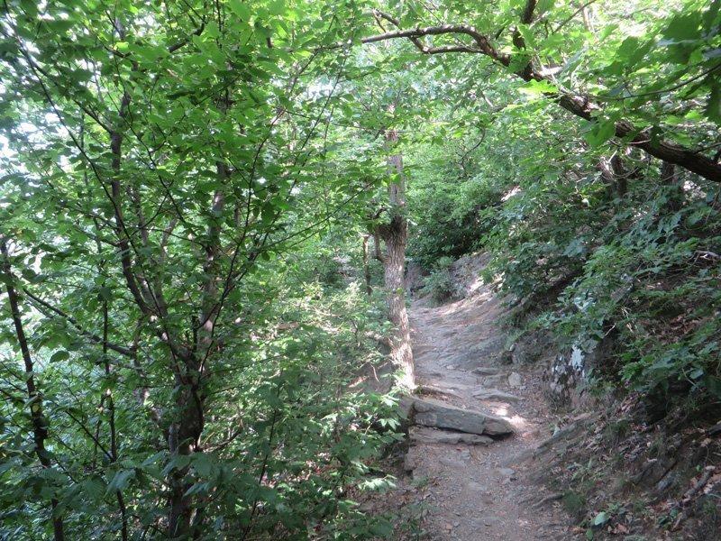 Ein Pfad, durch lichtes Grün, führt auf der neuen Ahrsteig-Etappe hinauf zum Teufelsloch, einem spektakullären Aussichtspunkt mit sagenhafter Legende