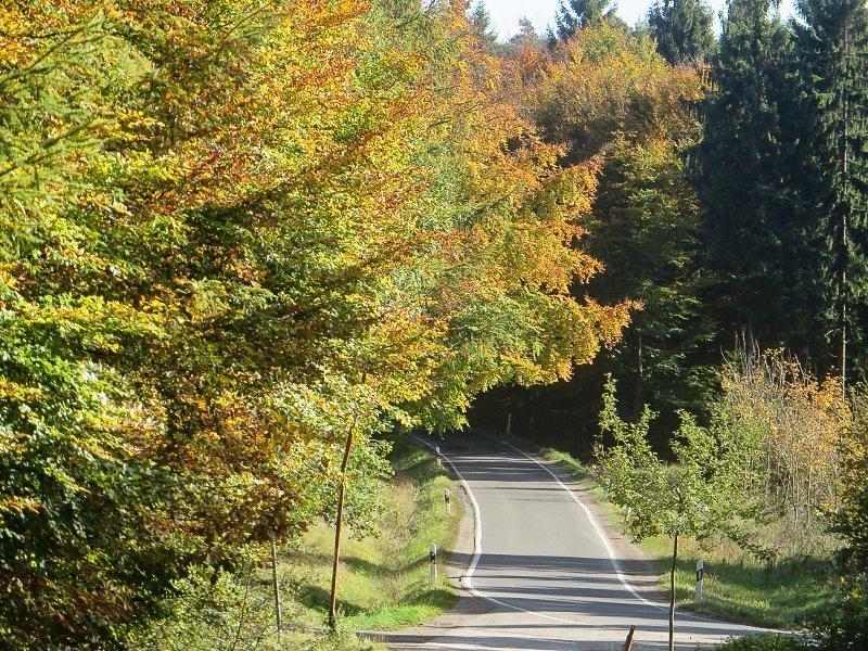 Diese AhrSteig-Etappe führt weitgehend durch den Aremberger Forst (Foto: Hans-Joachim Schneider)