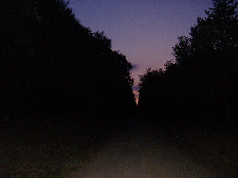 Dunkel, Nacht, Dämmerung, Frühaufsteher
