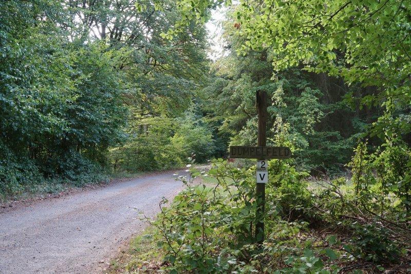 Ein breiter Weg, ein Wanderkreuz an einer Wegkreuzung, hier biege ich nach rechts