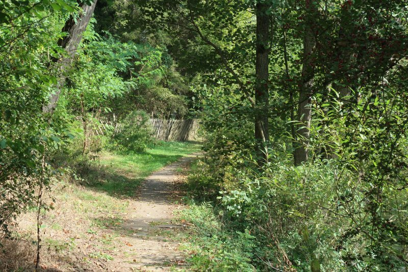 Ahrtal erleben, auf grünem Weg den Ort verlassen