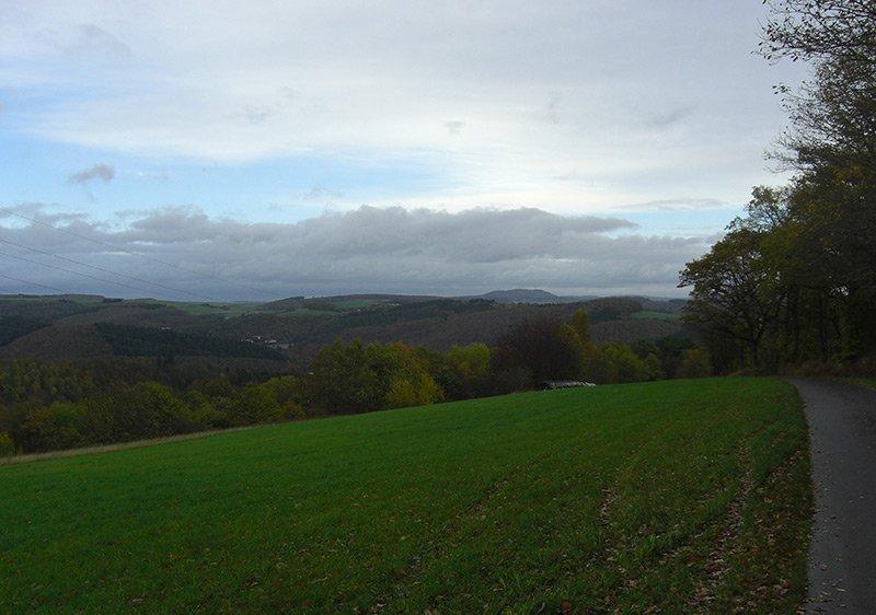 Am Waldrand ein Blick über den grünen Acker, darüber lichtet sich der Himmel
