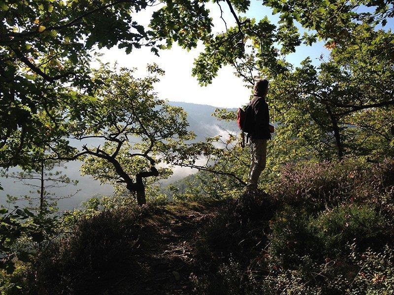 Wanderer im Wald im Gegenlicht beim Aufstieg auf die Engelslay, im Hintergrund Dunstschwaden über dem Tal