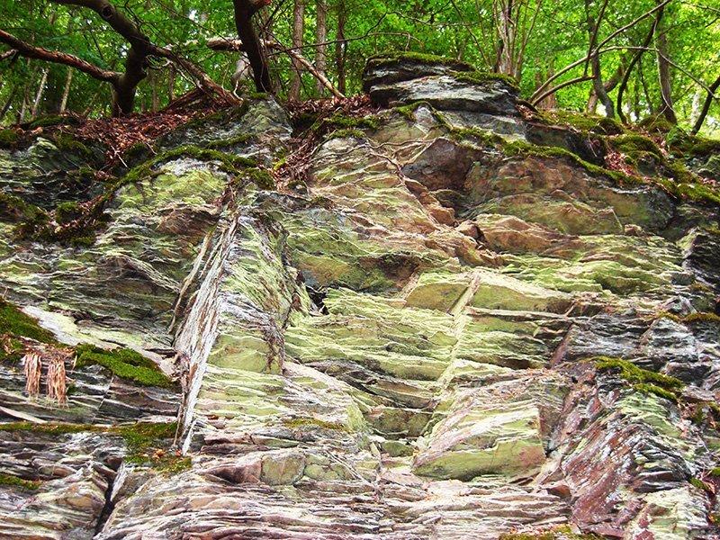 Gesteinsaufschluss am Weg zum Steinerberg: Schieferkalt von Fleichten durchzogen, in vielen Farben schimmern