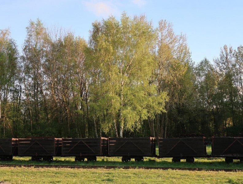 Im Vordergrund dunkelbraune Loren der alten Torfbahn ruhen am Rande des Himmelmoores in der Abendsonne
