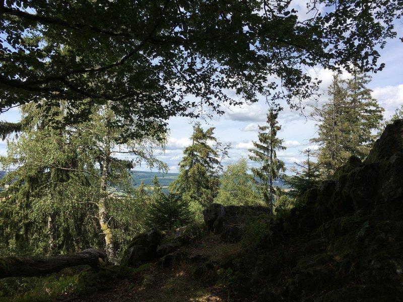 Das Grün der Fichten begrenzt den Ausblick auf den Kletterfelsen auf der Wildenburg