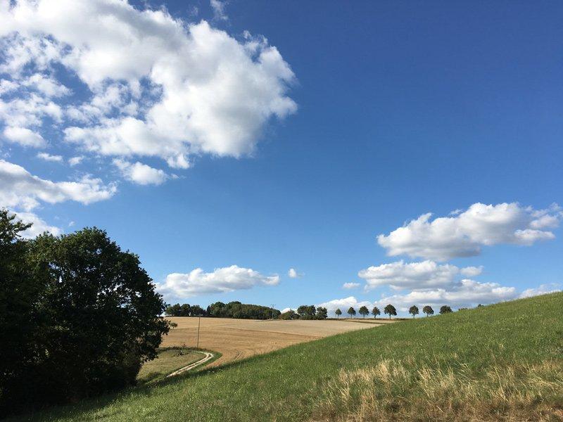 Ackerland, links eine Buschgruppe, darüber blauer Himmel mit kleinen Wolken, der richtige Hintergrund für eine Traumschleife