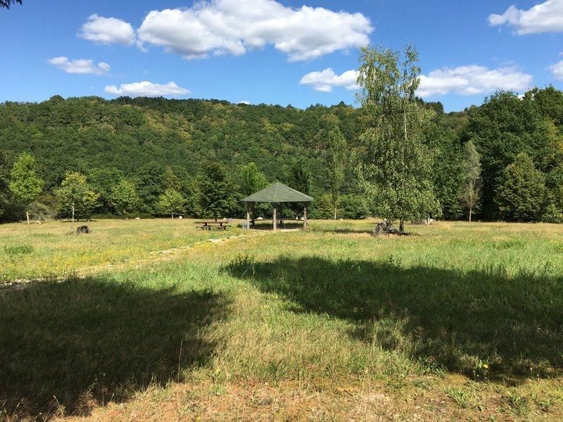 Eine große Wiese im Wald, ein Kreis aus Bäumen, in der Mitte eine offene schutzhütte