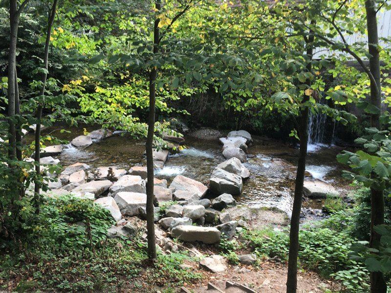 Große Felsbrocken mitten im Bachlauf: Sie führen den Wanderer sicher über den ersten Abschnitt des Schwarzwaldsteigs.