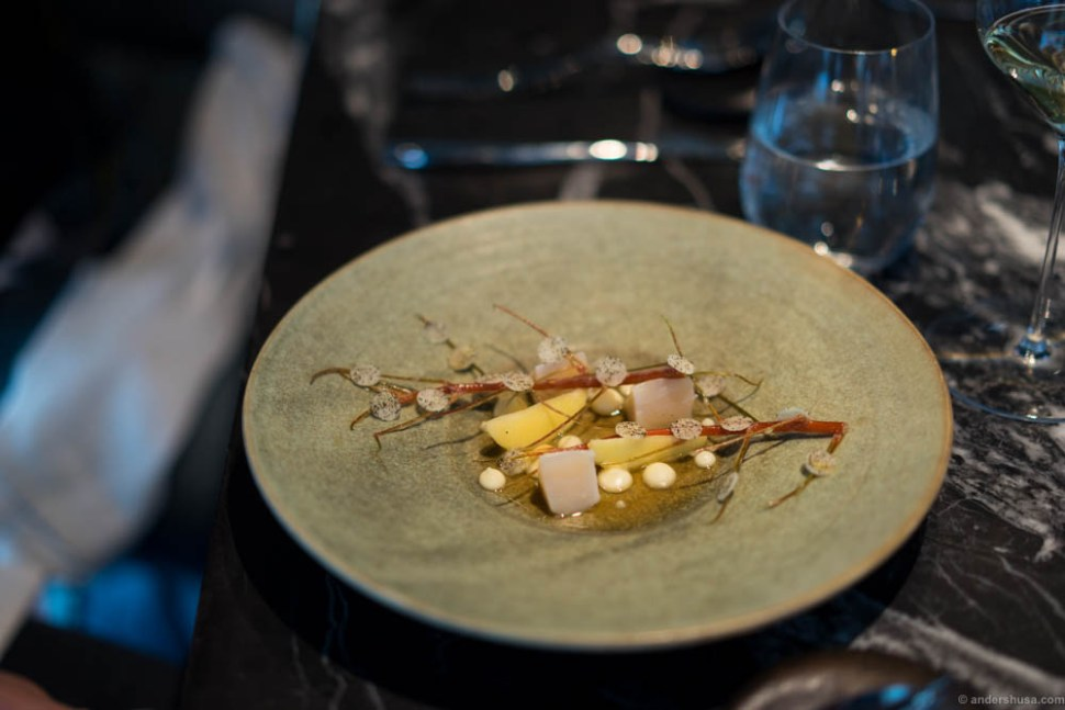 Scallops from Frøya grilled in their own shell, winter apples, and celeriac.