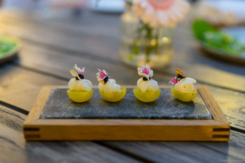 Yellow tomatoes from Brimse with squid and fermented garlic purée