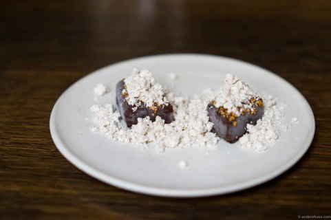 Sweet potato fudge with chocolate coating, dried seabuckthorn and hazelnut snow