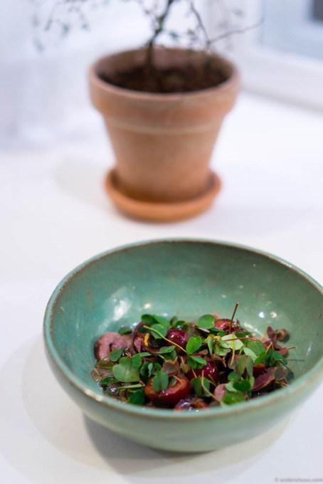 Lightly smoked duck heart, cherries and chinkiang (black rice vinegar)