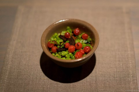 Bird's liver custard, redcurrants, malted cabbage and black garlic