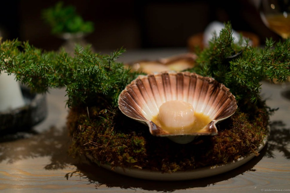 Scallop cooked in its own shell over burning juniper branches