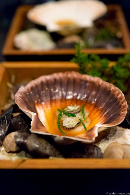 "Scallop ""umami"" – in an intense broth, topped with truffle, parmesan & samphire"