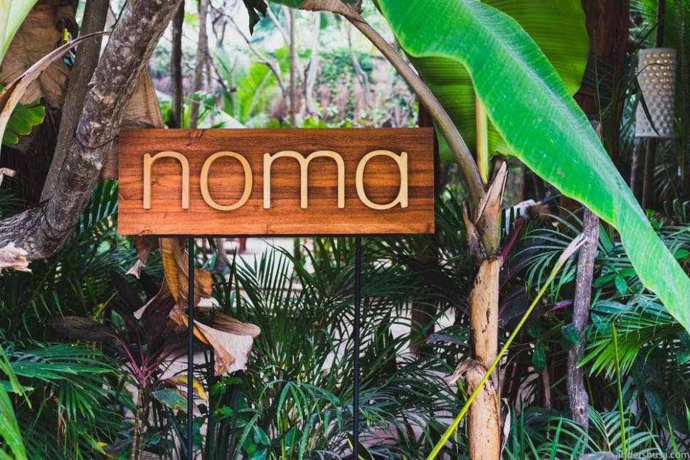 Noma Mexico – jungle restaurant