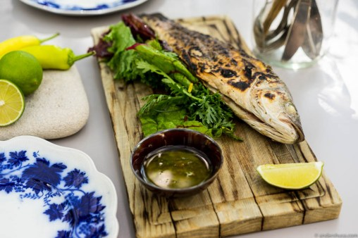 Whole grilled sea bass with chimichurri sauce
