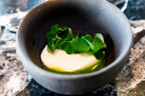 Fresh cheese made 1 hour ago from raw milk of Maaemo's very own cow (Isrosa), wood sorrel, and summer cucumber
