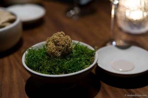 Reindeer moss with mushroom dust and truffle dip