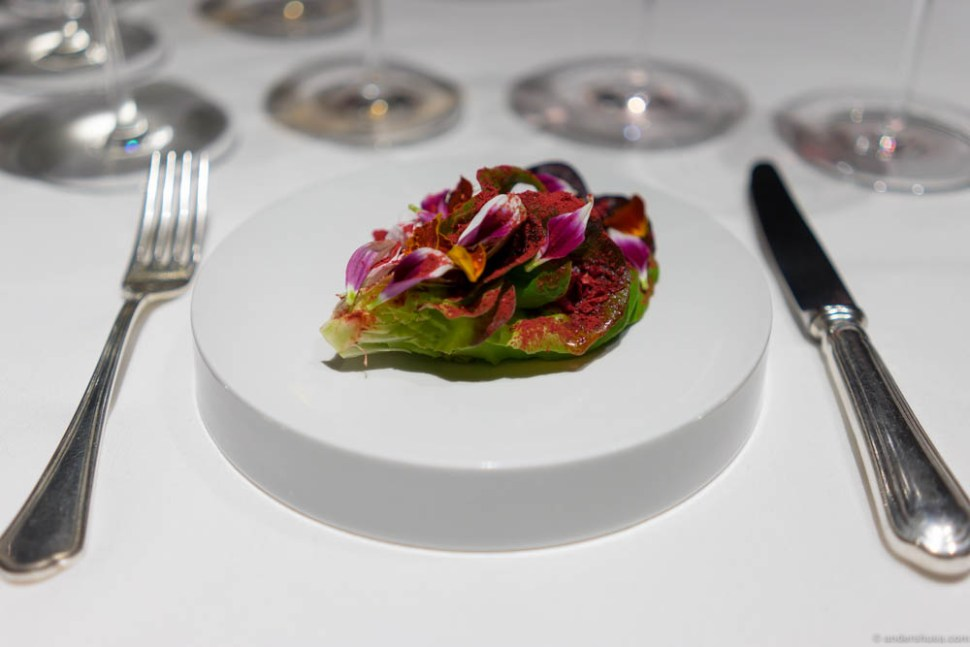 Caesar salad in bloom