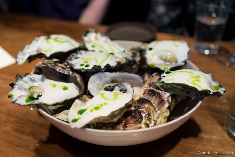 Oysters & fermented milk foam