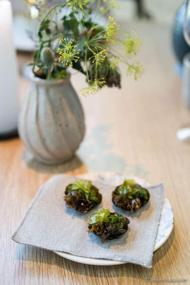 Seaweed tart: sugar kelp tart filled with a herb paste and different seaweeds