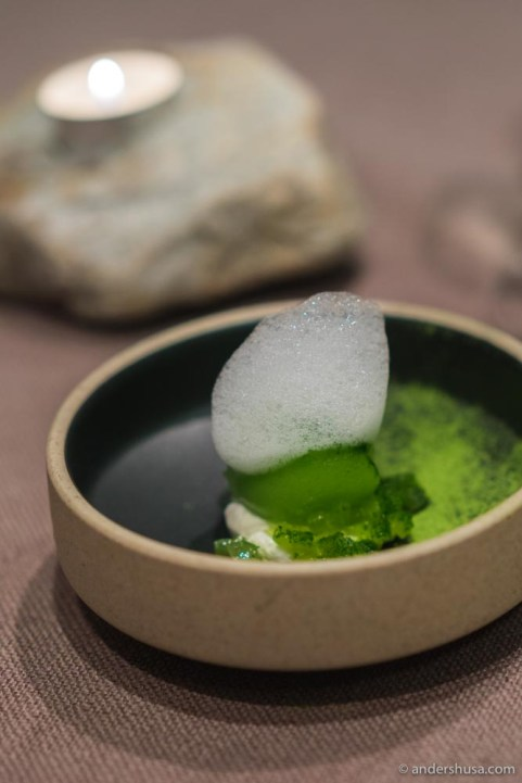 fagn-trondheims-first-michelin-starred-restaurant-jonas-navik-review-food-foodie-eat-fine-dining-set-menu-best-tips-recommendation-guide-travel-2018-16