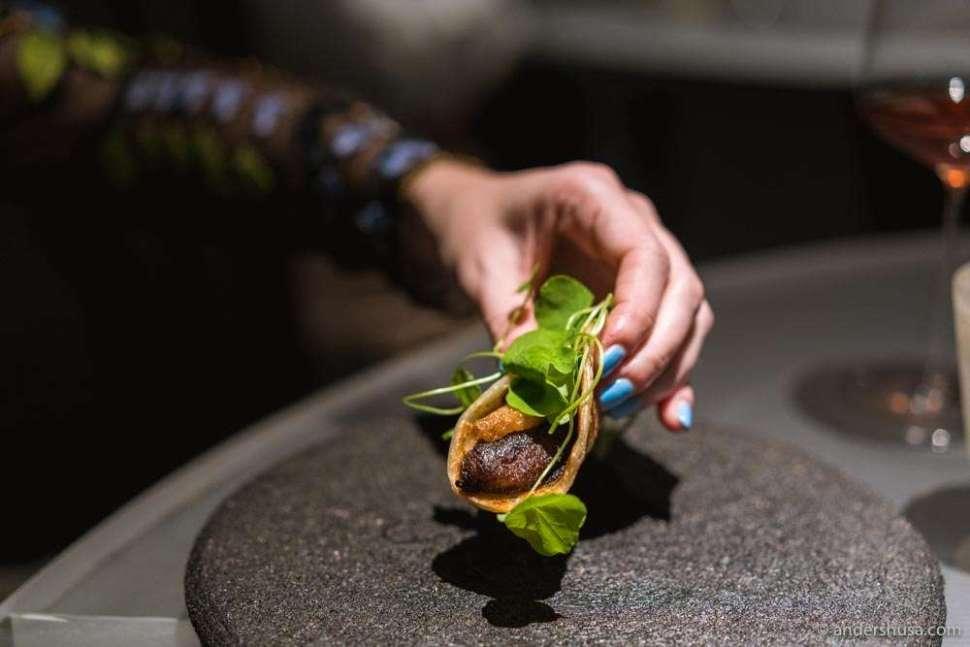 Overripe plantain taco with lamb marmite and nasturtium.