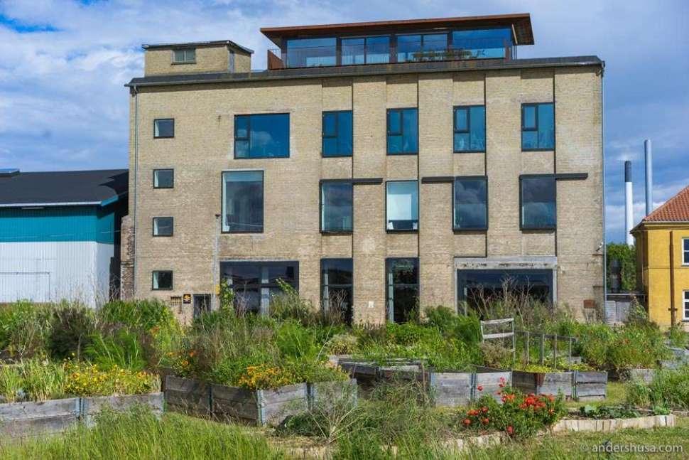 Restaurant Amass is located in Refshaleøen in Copenhagen and has its own garden.