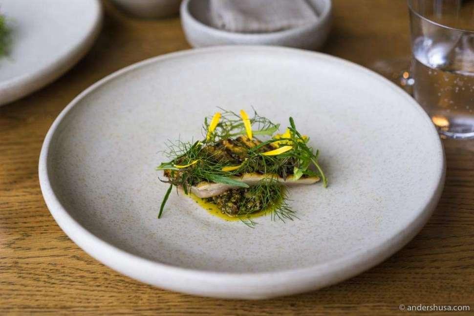 Salted mackerel, dried shellfish XO sauce, grilled cabbages, pickled lemon skins & garden shoots.