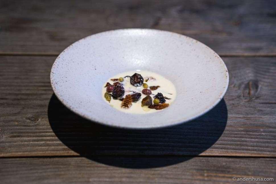 """Preserved berries and pinecones and cream. A modern """"rødgrød med fløde."""""""