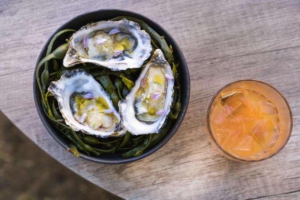 Oysters, citronette, elderflower vinegar, and chive flower.